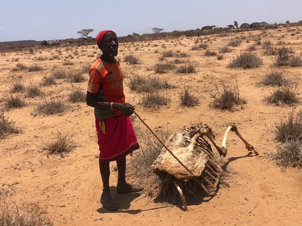 Dürre bedroht mehr als 2 Millionen Menschen. (Foto: OTS)