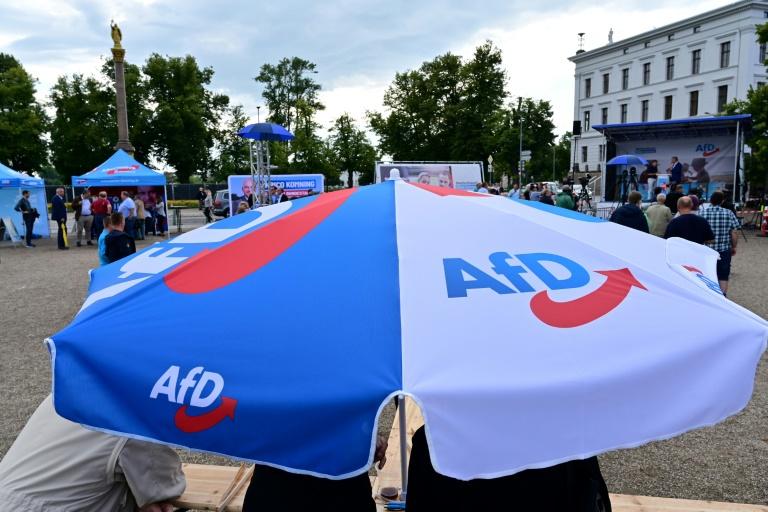 AfD-Bundestagsfraktion verliert möglicherweise erstes Mitglied (© 2021 AFP)