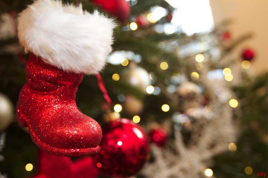 Verbände rechnen mit konstanten Preisen bei Weihnachtsbäumen (Foto: xity)
