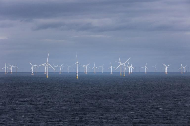 Forscher mahnen neue Regierung zu deutlich mehr Tempo beim Klimaschutz (© 2021 AFP)