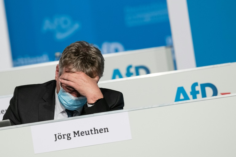 Meuthen tritt nicht erneut als AfD-Bundesvorsitzender an (© 2021 AFP)